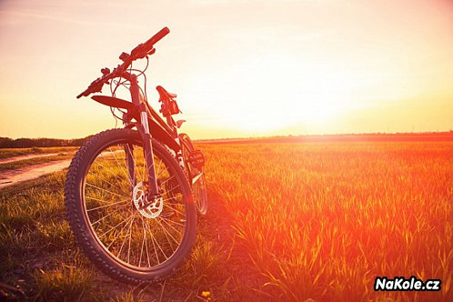 5 evropských cyklostezek, které stojí za výlet